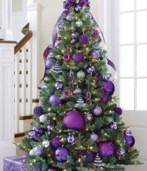 Purple Colour-izeko.hubpages.com